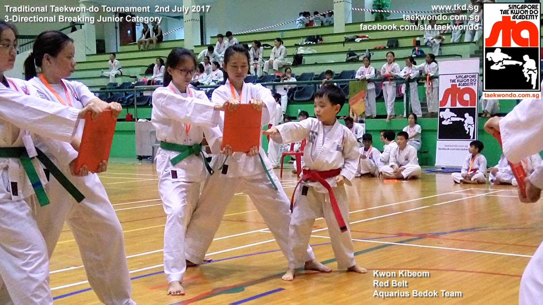 Kwon Kibeom Knife Hand Strike Board Breaking Competition Tournament Kids Children Self Defence Martial Arts Aquarius Bedok Reservoir Tampines Club School Adrian Huan Senior Instructor Singapore Taekwon-do Academy HQ Traditional Taekwondo STA TKD SG